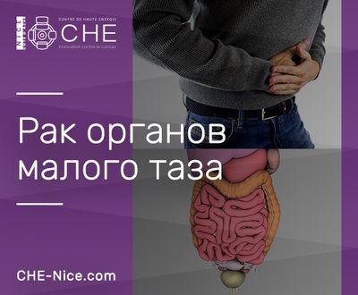 Онкология органов малого таза