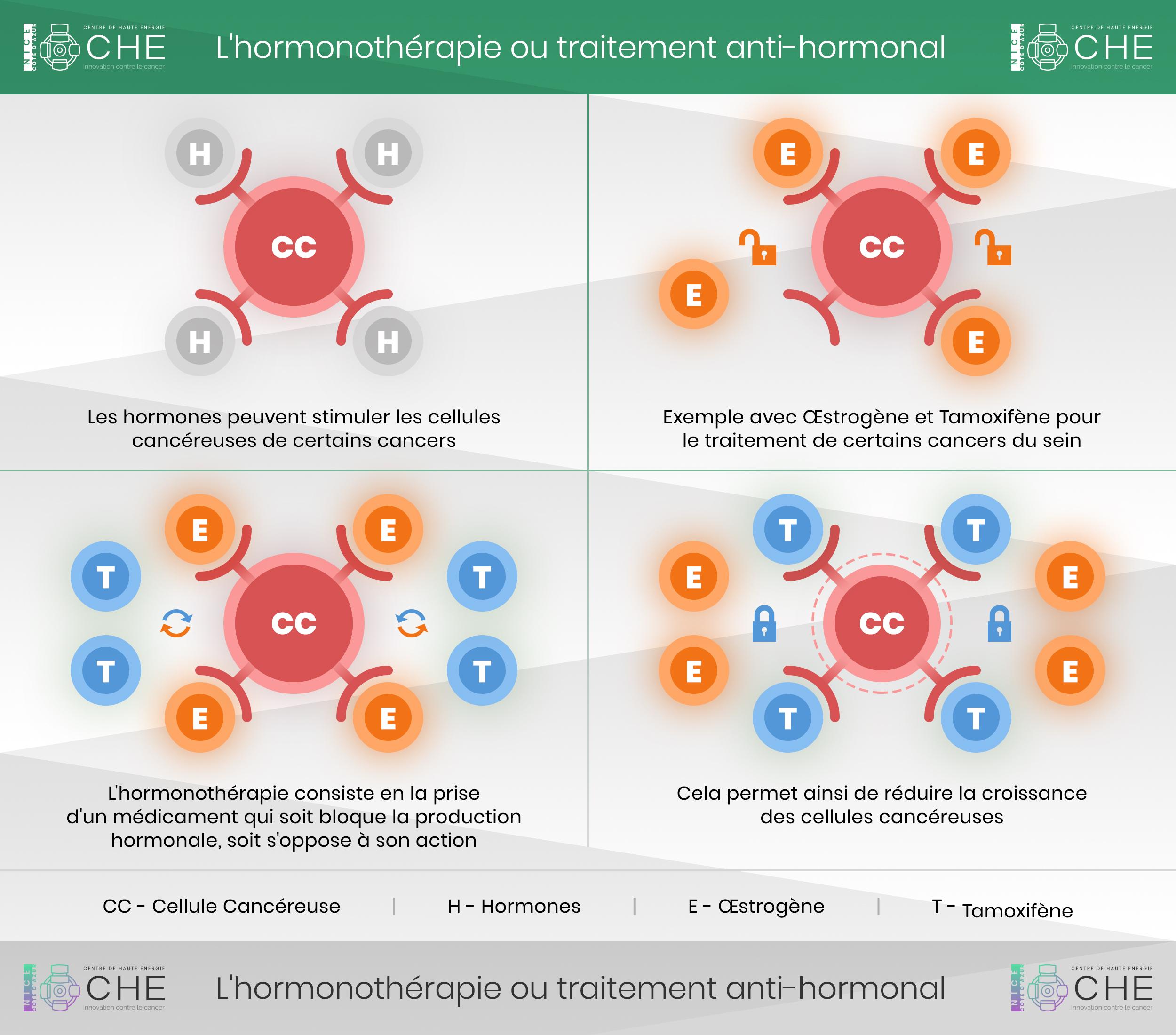 hormonothérapie fonctionnement