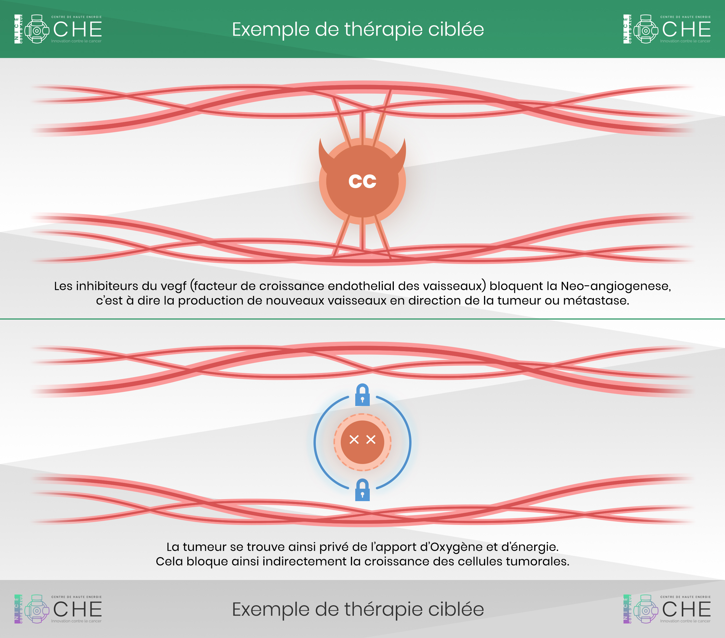 therapies cibees fonctionnement