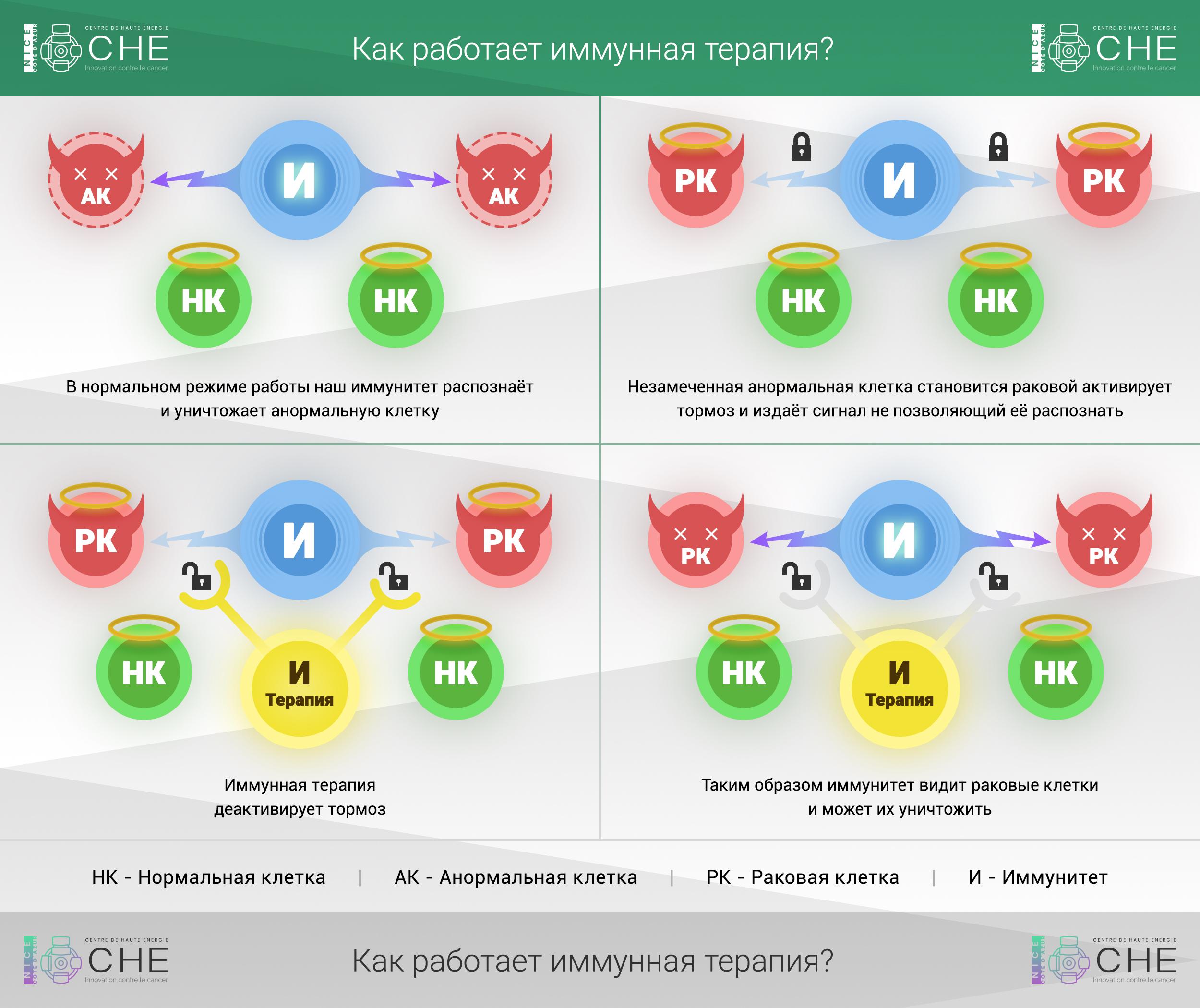 immunnaya terapiya